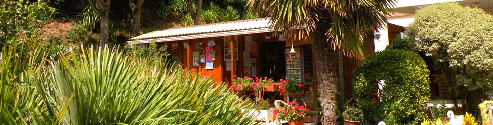 accueil camping les cyprès longeville sur mer