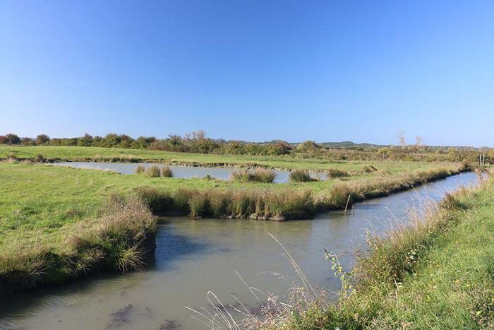 Marais Vendée