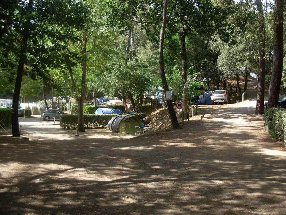 allée du Camping les Ramiers Longeville/mer