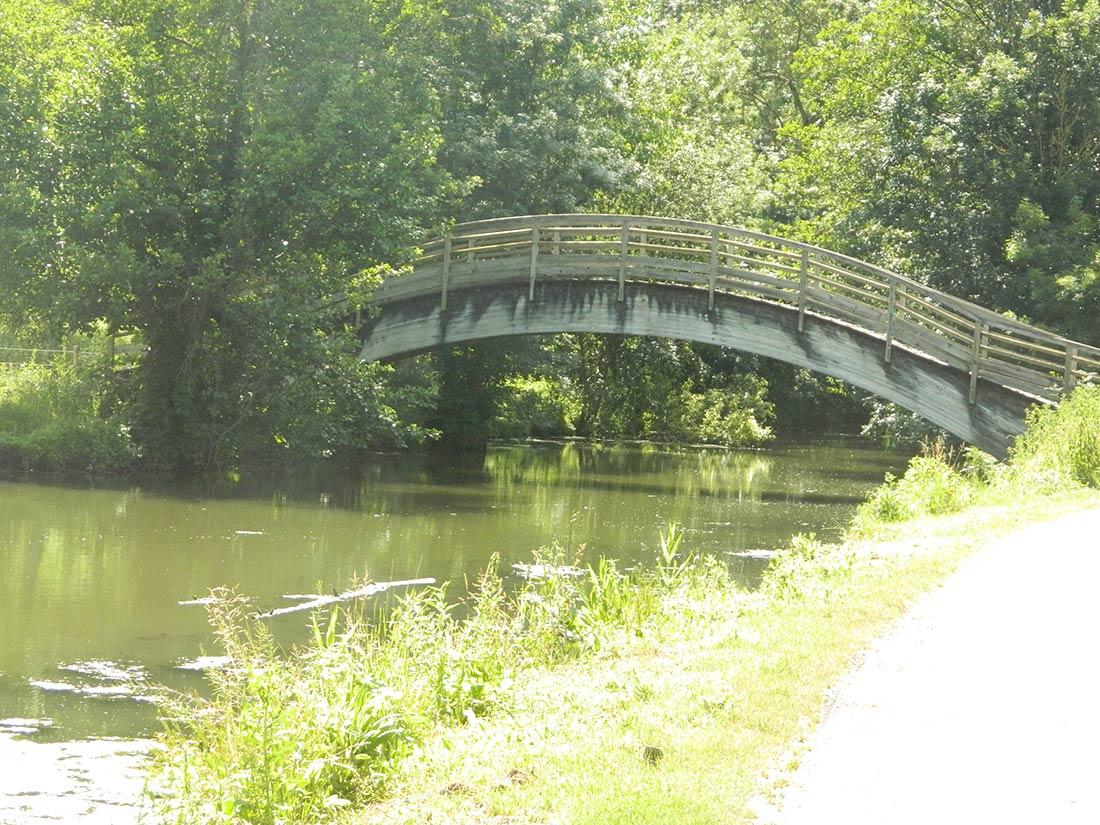 pont sur le marais