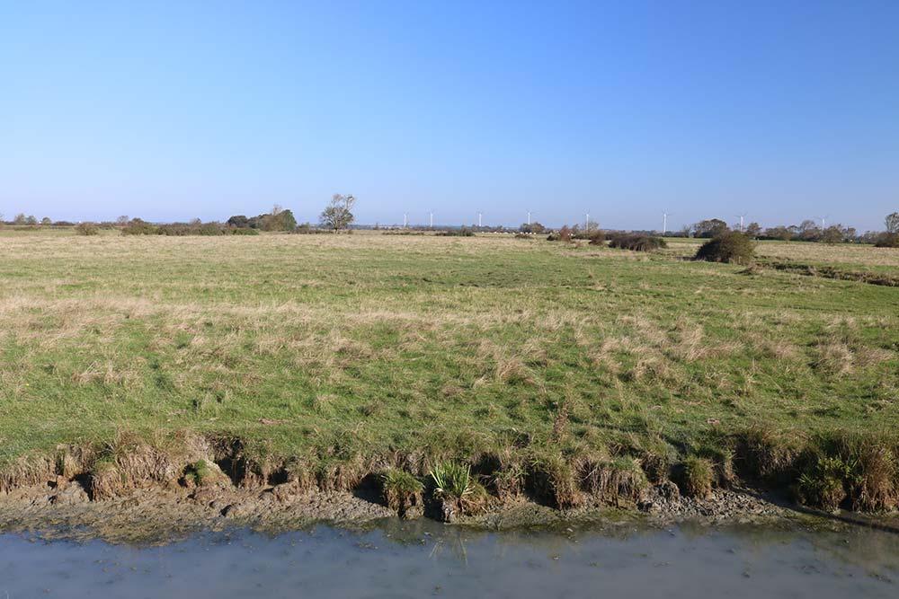 les marais de longeville près du camping les Ramiers