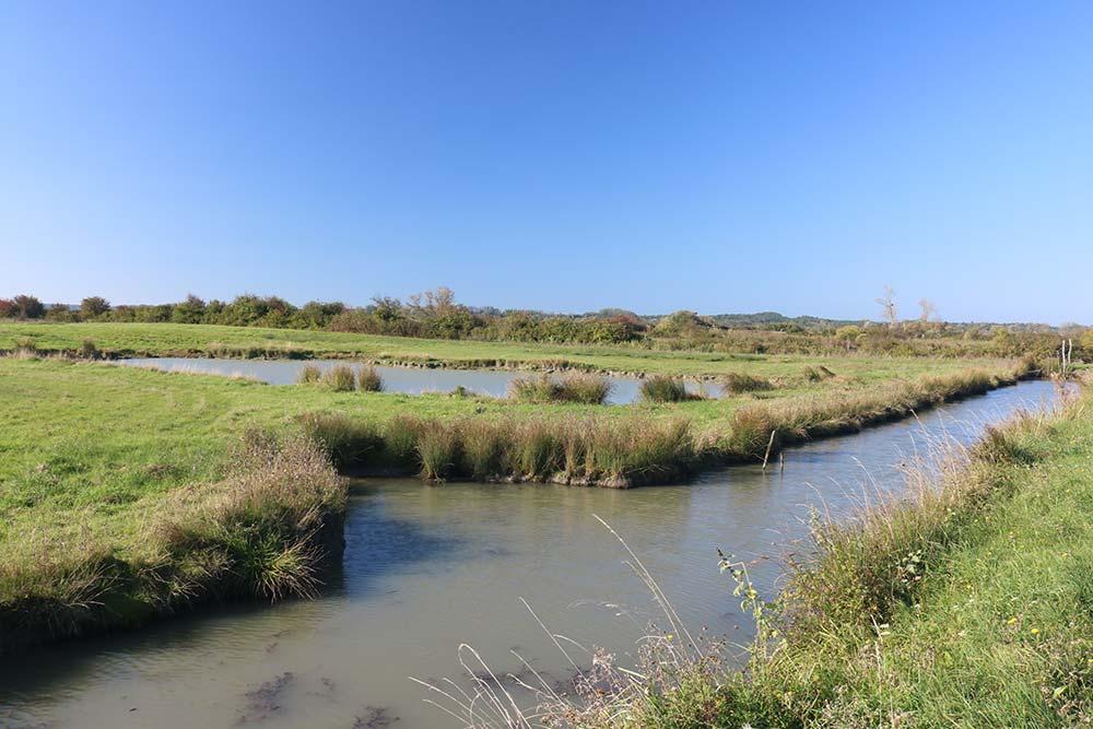 le marais près du camping les Ramiers