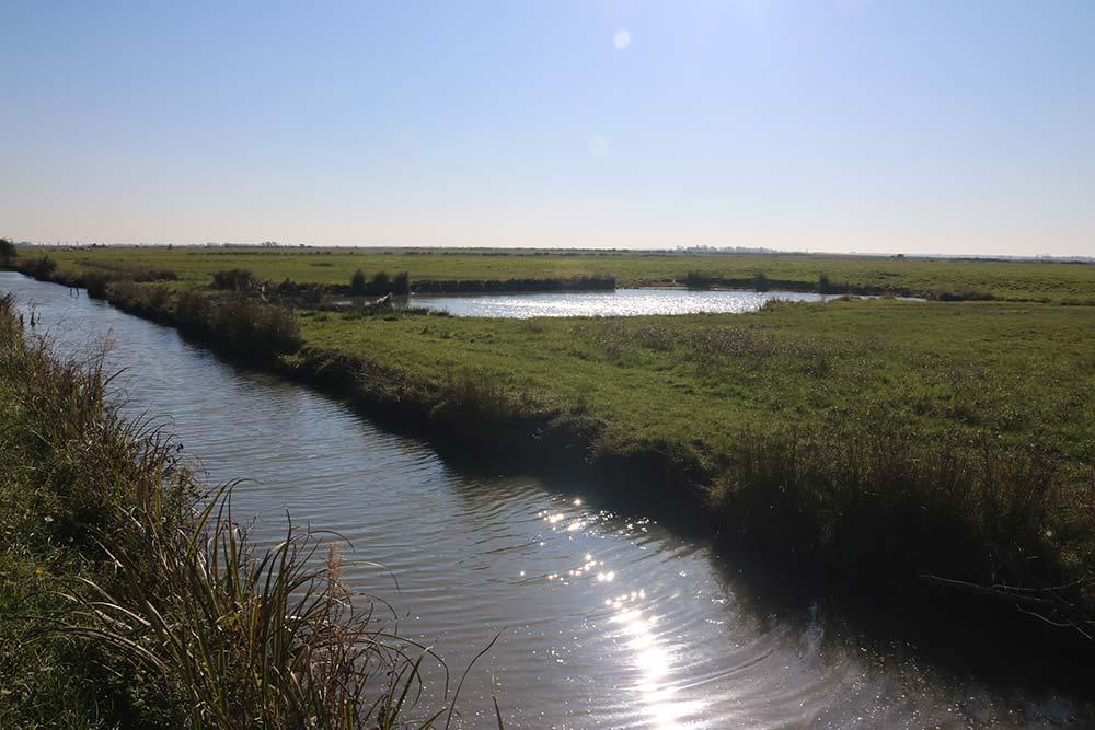 les canaux du marais