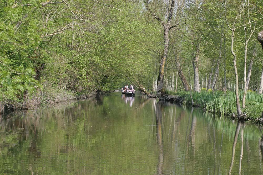 barques sur le marais poitevin