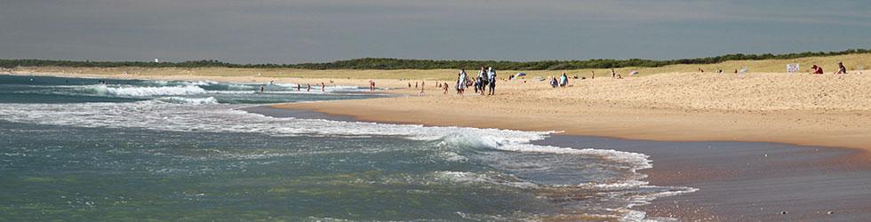 Camping proche plage des Conches en Vendée
