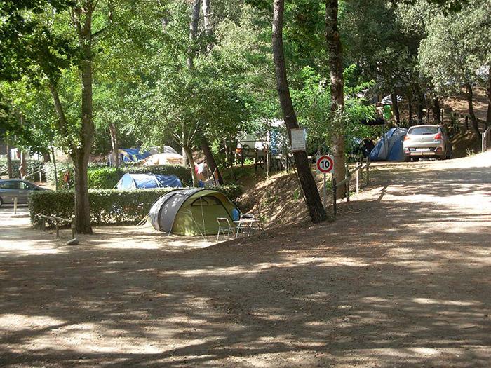 bon plan emplacement camping Vendée