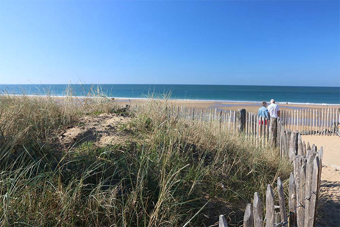 camping proche plage acceptant les chiens en Vendée